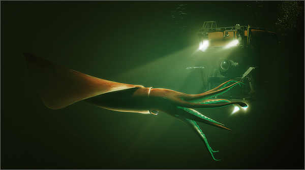 Picture Of A Giant Squid Being Lit Up By A Yellow Submarine