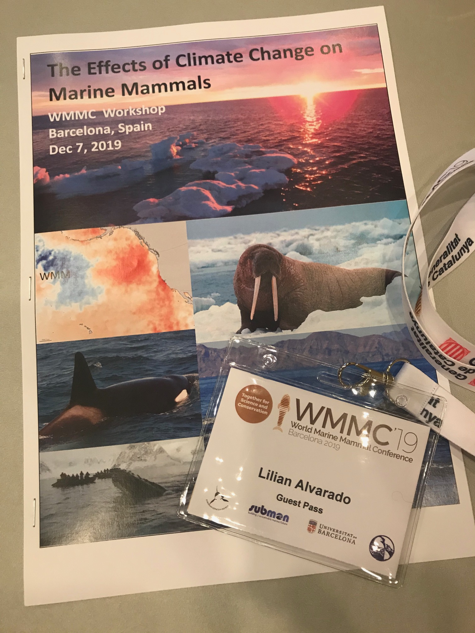 A Pamphlet With Pictures And The Text The Effects Of Climate Change On Marine Mammals