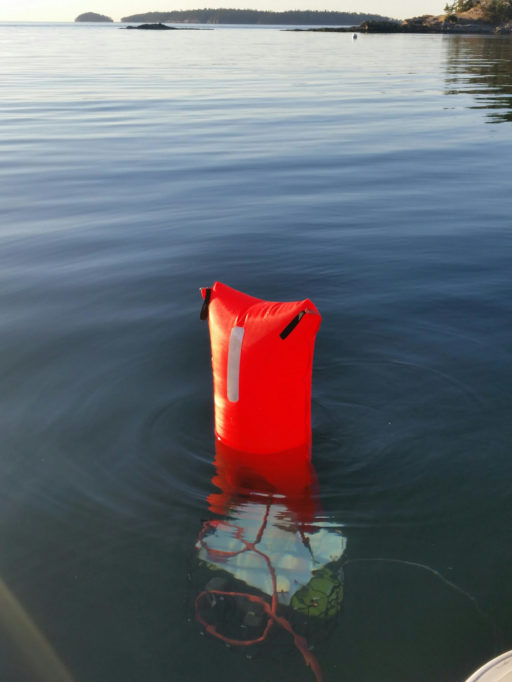 Life Vest Floating In The Water